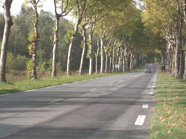Ex Nationale 10 entre Rambouillet et Epernon